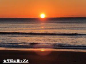太平洋の夕マズメ