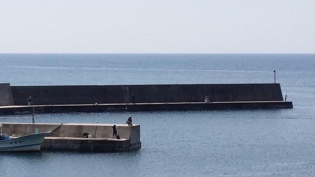 村上市桑川漁港 アジ釣り