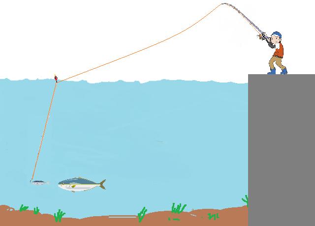 泳がせウキ仕掛け釣り方