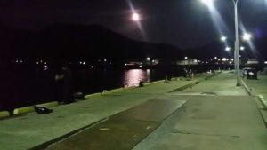 鼠ヶ関港夜釣り