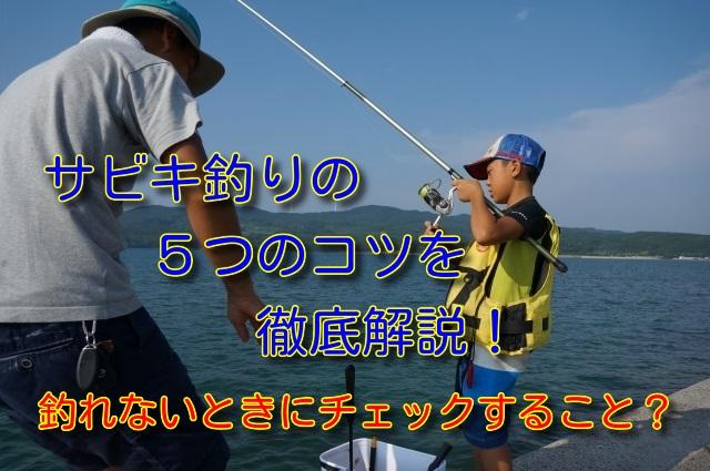 サビキ釣り5つのコツ