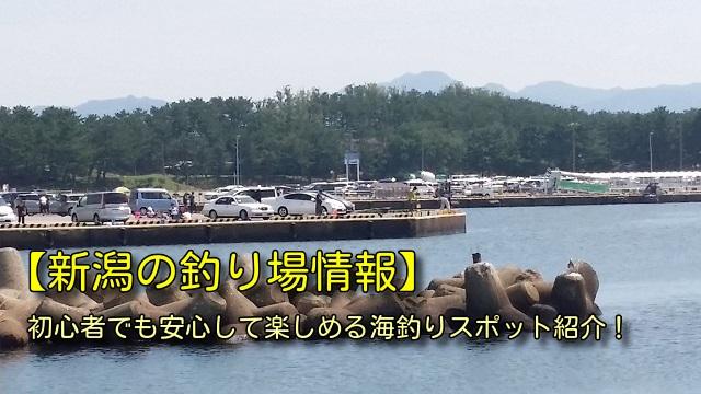 新潟の釣り場情報
