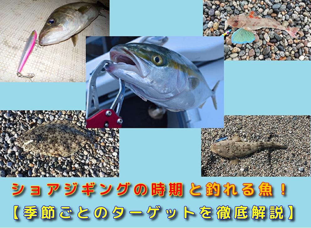 ショアジギングの時期と釣れる魚
