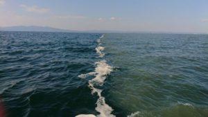 海水の塩分濃度