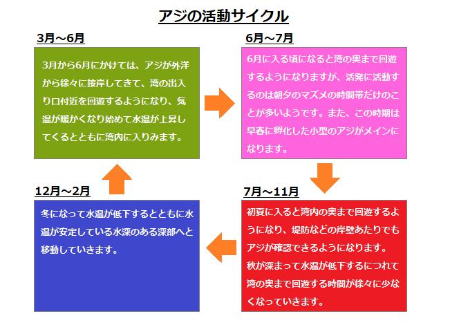アジの活動サイクル