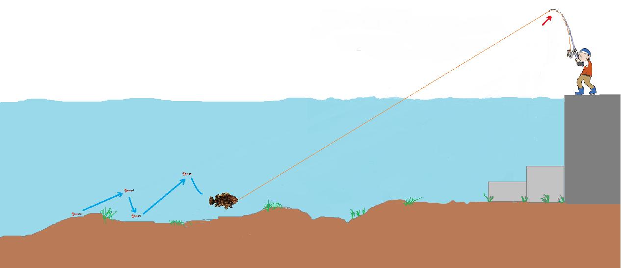 魚を根から離す