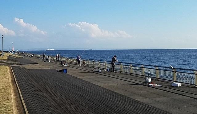 東扇島西公園釣りポイント