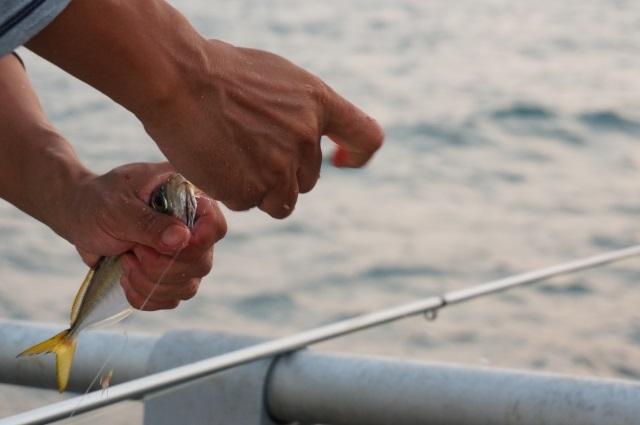 かかった魚を外す