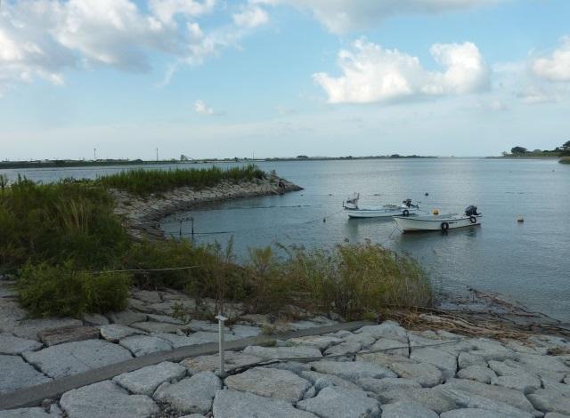 ハゼ釣り場所1