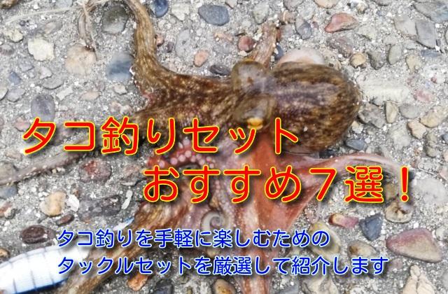 タコ釣り セット タイトル画像