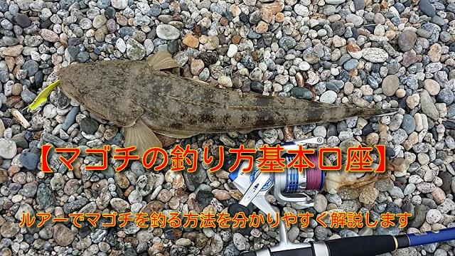 マゴチ 釣り方 タイトル画像