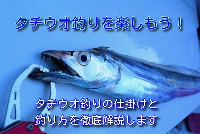 タチウオ釣り 仕掛けと釣り方 タイトル画像